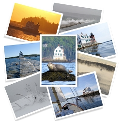 Rockland Breakwater: A Journey Through the Seasons Card Set | Box Set of 8